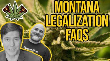 How to Get a Cannabis Business License in Montana   Montana Dispensary   Montana Marijuana Laws
