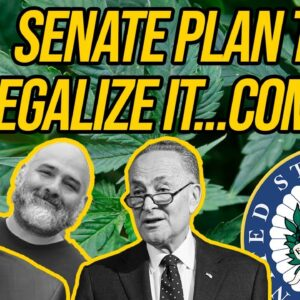 Schumer Marijuana Bill Will Stop Big Alcohol And Tobacco From Dominating Market