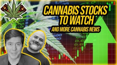 Marijuana Stocks to Watch This Week and More Cannabis Legalization News