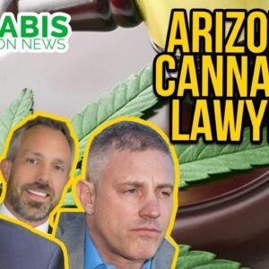 Arizona Cannabis Lawyer | Thomas Dean