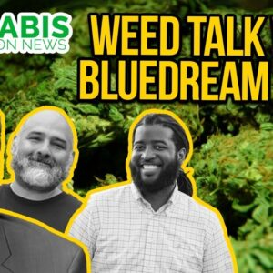 BlueDream Radio - Diversity and Inclusion in the Cannabis Industry