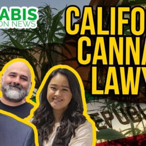 California Cannabis Lawyer | Cultiva Law