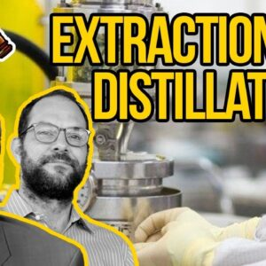 Cannabis Extraction and Distillation - How to Make Cannabis Concentrates