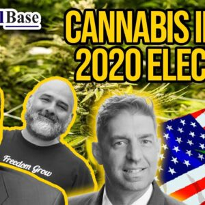 Cannabis in the 2020 Election | Five States Pass Cannabis Measures