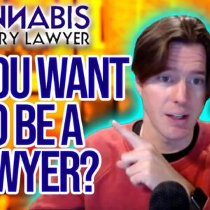 Cannabis Industry Lawyer Jobs | Help Us Open New Markets