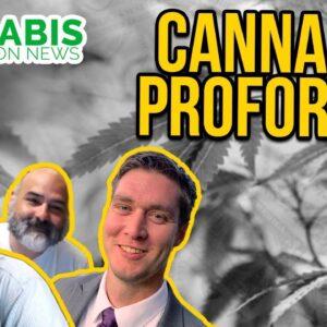 Cannabis Proformas for Dispensaries and Grows | Vigland Advisors