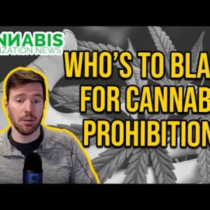 Cannabis Prohibition - Who's to Blame