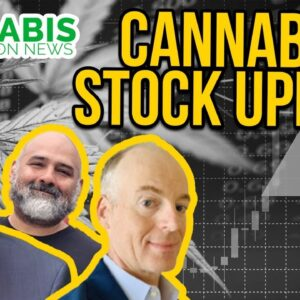 Cannabis Stock News | CFN Media