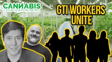 Cannabis Unions - GTI Workers Unite for Rights
