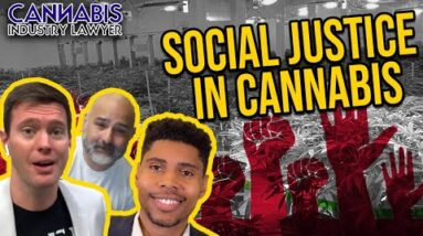 Chicago Cannabis Lawyer - Social Justice in Illinois Cannabis