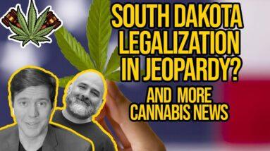 Cannabis Stocks Surge Due to Reddit, South Dakota Judge Rejects Marijuana Amendment