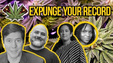 How to Expunge Your Record - National Expungement Week with Cannabis Equity Illinois Coalition
