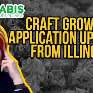 Craft Grower Application Updates from Illinois