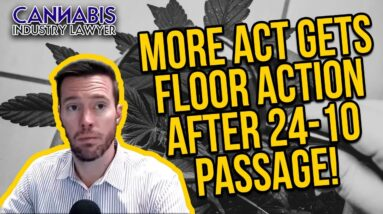 The MORE Act - Marijuana Opportunity, Reinvestment and Expungement (MORE) Act