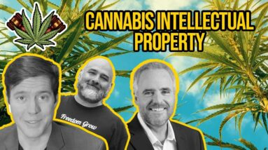 Can You Trademark Cannabis Brands? Cannabis Intellectual Property Questions & Answers