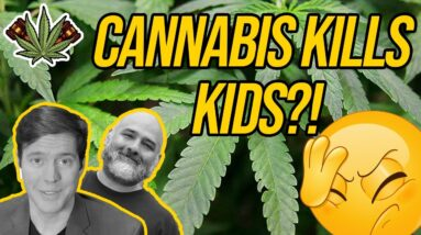 Marijuana Kills Kids Apparently, and a Tennessee Lawmaker Wants to PERMANENTLY Block Legalization
