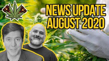 Federal Cannabis Legalization News - August 2020 - Cannabis News Roundup