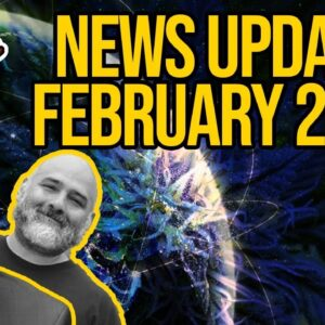 Federal Cannabis Legalization News - February 2021 - Cannabis News Roundup