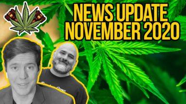 Federal Cannabis Legalization News - November 2020 - Cannabis News Roundup