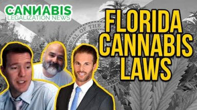 Florida Cannabis Laws - Dustin Robinson - Mr. Cannabis Law