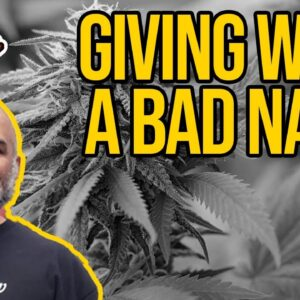 Giving Weed A Bad Name | Smoking Pot on Capitol by Rioters Trespassing