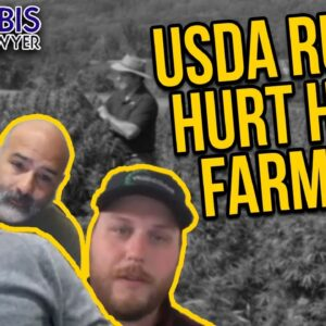 Hemp Farmers Hurt by New USDA Rules