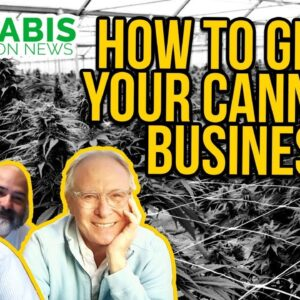 How to Grow Your Cannabis Business