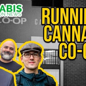 How to Run a Cannabis Co-op | Chicago Cannabis Company