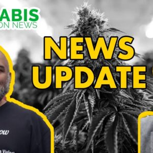 Illinois Cannabis Licenses ARE COMING, COVID-19, and More News