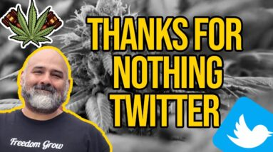 Thanks For Nothing Twitter | Marijuana Trending on Twitter Despite Marijuana Shadow Ban