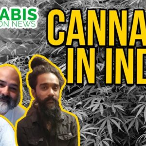 Is Cannabis Legal in India? Great Legalisation Movement - Viki Vaurora