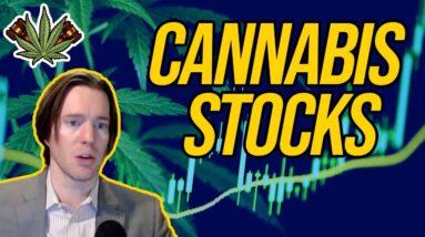 Cannabis Stocks | Should you invest in pot stocks | What marijuana stocks to buy?