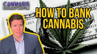 Cannabis Banking Consultant - How to get a bank account for your cannabis business - FinCEN SARs