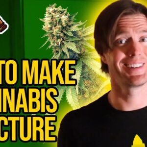 Cannabis Tincture - how to make tincture | ethanol marijuana extraction with Magical Butter Machine