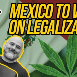 Mexican Lawmakers To Vote On Marijuana Legalization; Georgia Introducing Marijuana Legalization Bill