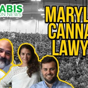 Maryland & Washington DC Cannabis Lawyers | Kinner & McGowan