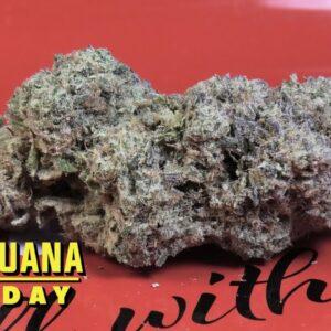 Mint Slushie Marijuana Monday