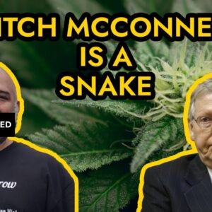 Mitch McConnell Hates Marijuana - Stops Unemployment Stimulus