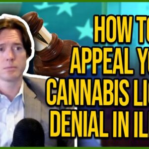 How to Appeal Your Cannabis License Denial in Illinois - Complete guide to lawsuits & amendments