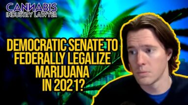 Democratic Senate to Federally Legalize Marijuana In 2021? MORE Act, or something new?