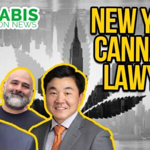 New York Cannabis Legalization