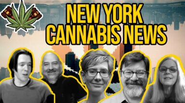 New York Cannabis News | Will New York Legalize in 2021?