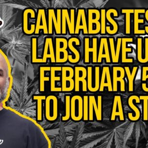 NIST Is Conducting A Study to Distinguish Between Hemp and Marijuana