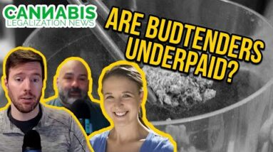 Starting a Cannabis Business | Building Your Team | HR Software for Cannabis Businesses