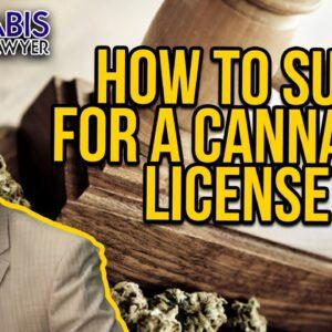 How to Sue for a Cannabis License - Illinois, Missouri & Florida marijuana litigation examples