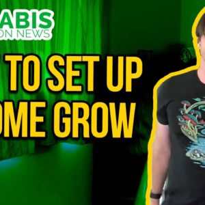 How to Setup a Home Grow Tent - Basic Grow Tent Kit Setup Guide - Indoor grow with carbon filter.