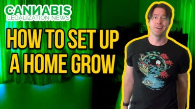 How to Setup a Home Grow Tent - Basic Grow Tent Kit Setup Guide - Indoor grow with carbon filter.