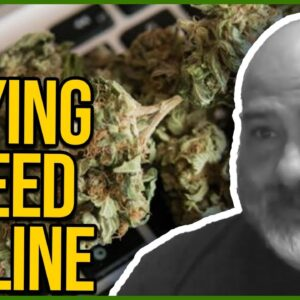 Can I buy weed online? | How to avoid cannabis scammers | Follow your laws when buying weed online