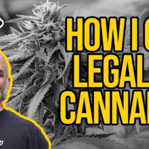 How Can I Help Legalize Cannabis? What you can do to help with cannabis legalization.