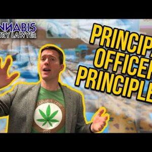 Principal Officers for Cannabis Companies